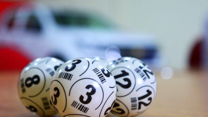 Win Bingo